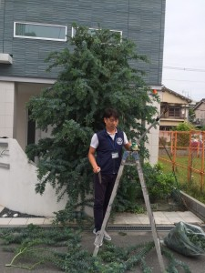 ゴーゴー剪定&お庭のお片付け